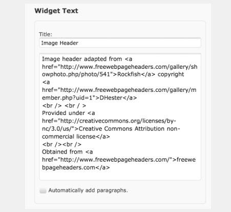 Adding information to the widget